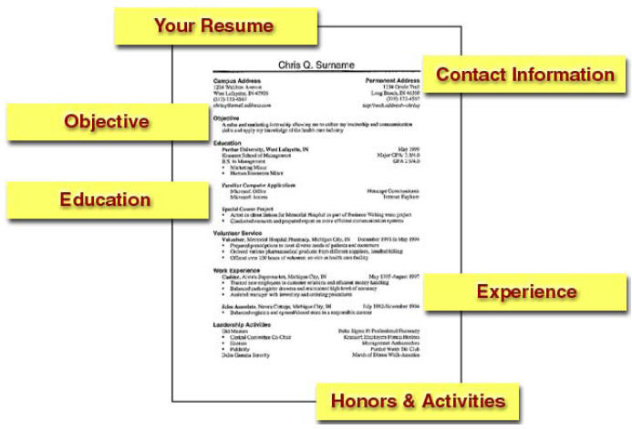 Resume Writing 101 Employment Elements